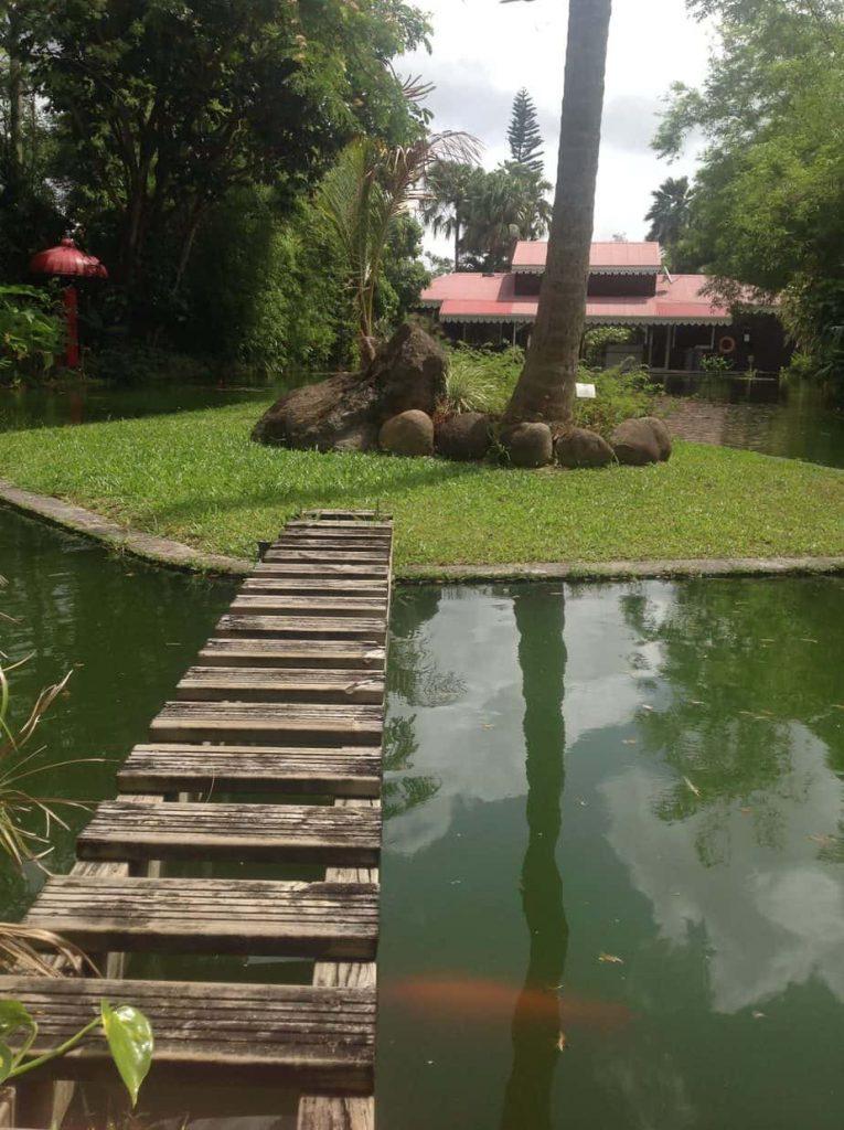 ogród botaniczny Karaiby