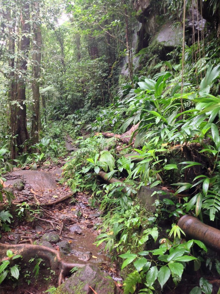wodospad Gwadelupa